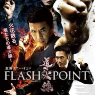 『導火線 FLASH POINT』『導火線』 『导火线』『Flash Point』